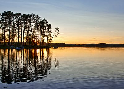 sunset, nature, trees, lakes, reflections - related desktop wallpaper