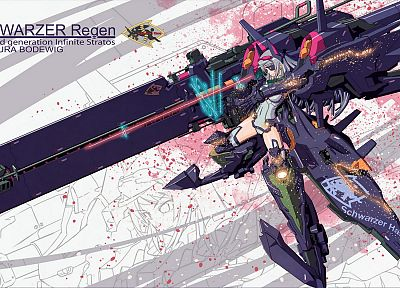 mecha, weapons, armor, Infinite Stratos, Bodewig Laura, anime girls, mecha musume - random desktop wallpaper