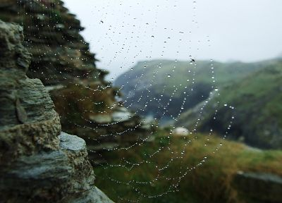 landscapes, water drops, macro, spider webs - related desktop wallpaper