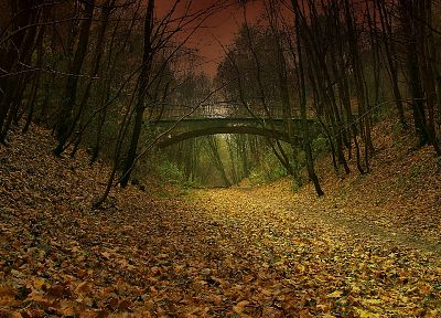 nature, autumn, paths, Falling Down (movie), fallen leaves - random desktop wallpaper