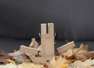 Danboard, fallen leaves - random desktop wallpaper
