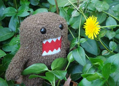 plants, Domo-kun - random desktop wallpaper