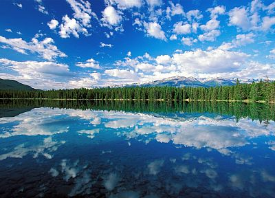 clouds, landscapes, trees, lakes, skyscapes - related desktop wallpaper