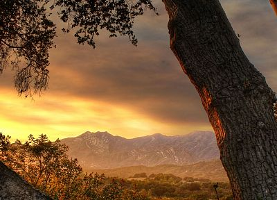 sunset, mountains, landscapes, trees - desktop wallpaper