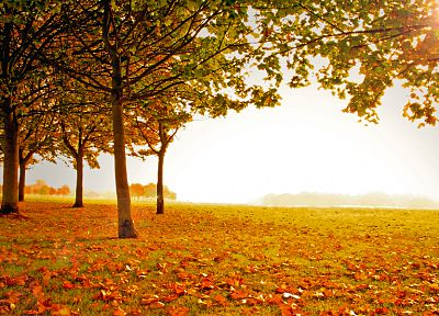 landscapes, autumn - random desktop wallpaper