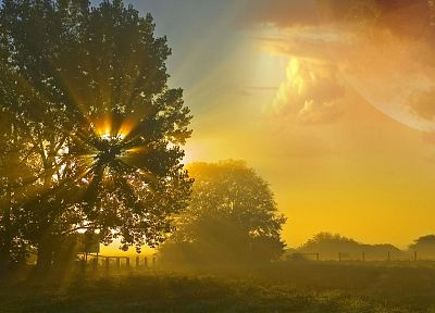 clouds, nature, Sun, trees, sunlight, multiscreen, sun flare - related desktop wallpaper
