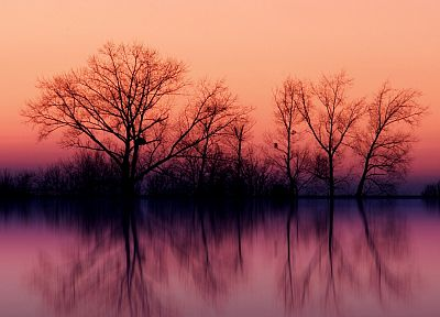 water, sunset, landscapes, nature, trees, skylines, fog, lakes, reflections - related desktop wallpaper