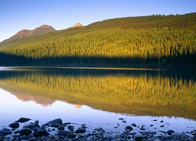 landscapes, nature, forests, lakes, National Park, Montana, Glacier National Park - related desktop wallpaper