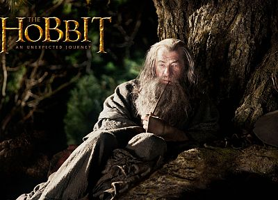 fantasy, movies, Gandalf, The Hobbit, Ian Mckellen, movie posters - random desktop wallpaper