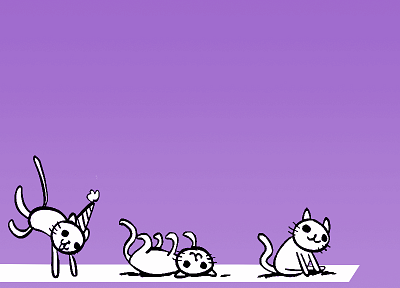 cats, purple, roll, party - desktop wallpaper