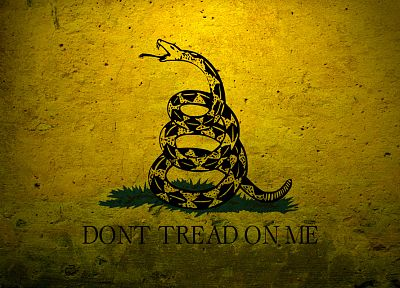 military, flags, USA, navy, concrete, Dont tread on me, Gadsden flag - random desktop wallpaper