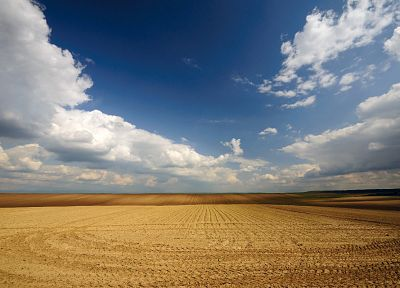 nature, fields, agriculture, skyscapes - random desktop wallpaper