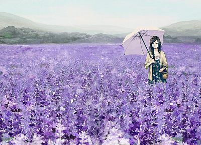 brunettes, flowers, fields, long hair, brown eyes, umbrellas, anime girls - related desktop wallpaper