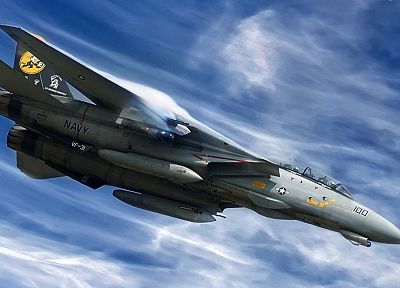 aircraft, military, F-14 Tomcat, fighter jets - related desktop wallpaper