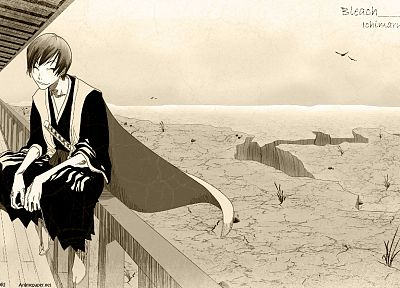 Bleach, Ichimaru Gin - random desktop wallpaper