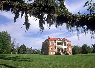 architecture, hall, plantation, branches, South Carolina, vines - random desktop wallpaper