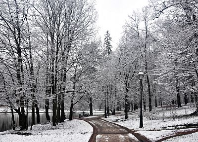 landscapes, nature, winter, snow, trees, forests, roads - related desktop wallpaper