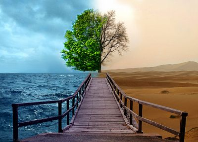 ocean, trees, deserts, bridges, Opposing Force, good vs evil, opposite, two - random desktop wallpaper