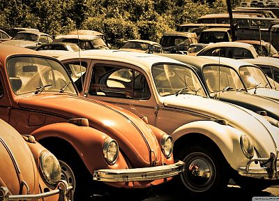 old, cars, Volkswagen Beetle - random desktop wallpaper