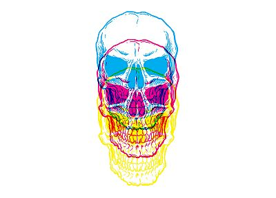 skulls, multicolor, white background - desktop wallpaper