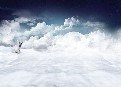 clouds, snow, moons, polar bears - related desktop wallpaper