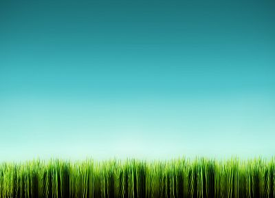 blue, minimalistic, grass - related desktop wallpaper