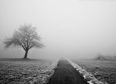 winter, fog, roads, monochrome - related desktop wallpaper