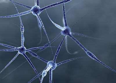 abstract, neurons - desktop wallpaper