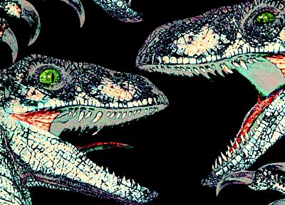 dinosaurs, velociraptor, Jurassic Park - related desktop wallpaper