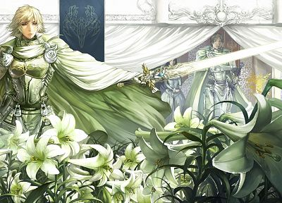 blondes, flowers, armor - desktop wallpaper