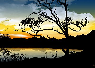 trees, silhouettes, lakes - related desktop wallpaper