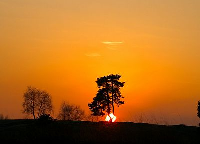 sunset, landscapes, Sun, trees - random desktop wallpaper