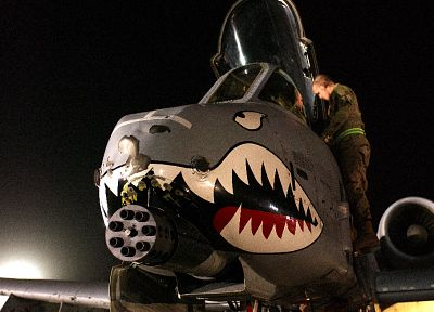 aircraft, night, military, Pilot, United States Air Force, vehicles, Avenger (aircrafts), Avenger (guns), A-10 Thunderbolt II, air force, nose art - random desktop wallpaper