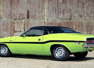 cars, muscle cars, vehicles, Dodge Challenger, classic cars - related desktop wallpaper