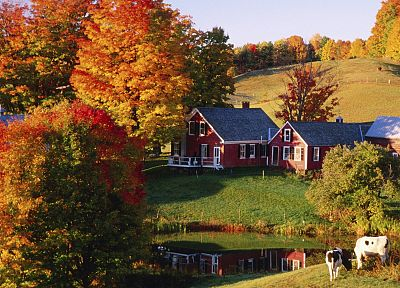 autumn, farms, vermont - desktop wallpaper