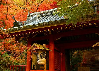 Japan, trees, autumn, houses - desktop wallpaper