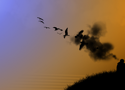 minimalistic, birds, silhouettes, thinking, flat - random desktop wallpaper