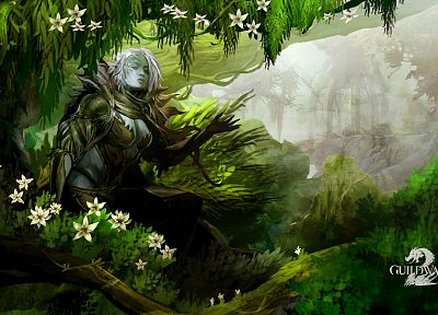 women, video games, nature, fantasy art, artwork, Guild Wars 2 - related desktop wallpaper