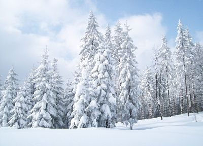 landscapes, winter, snow, Earth - related desktop wallpaper