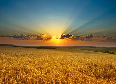 sunset, clouds, landscapes, nature, fields, sunlight - random desktop wallpaper