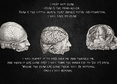 quotes, brain - random desktop wallpaper