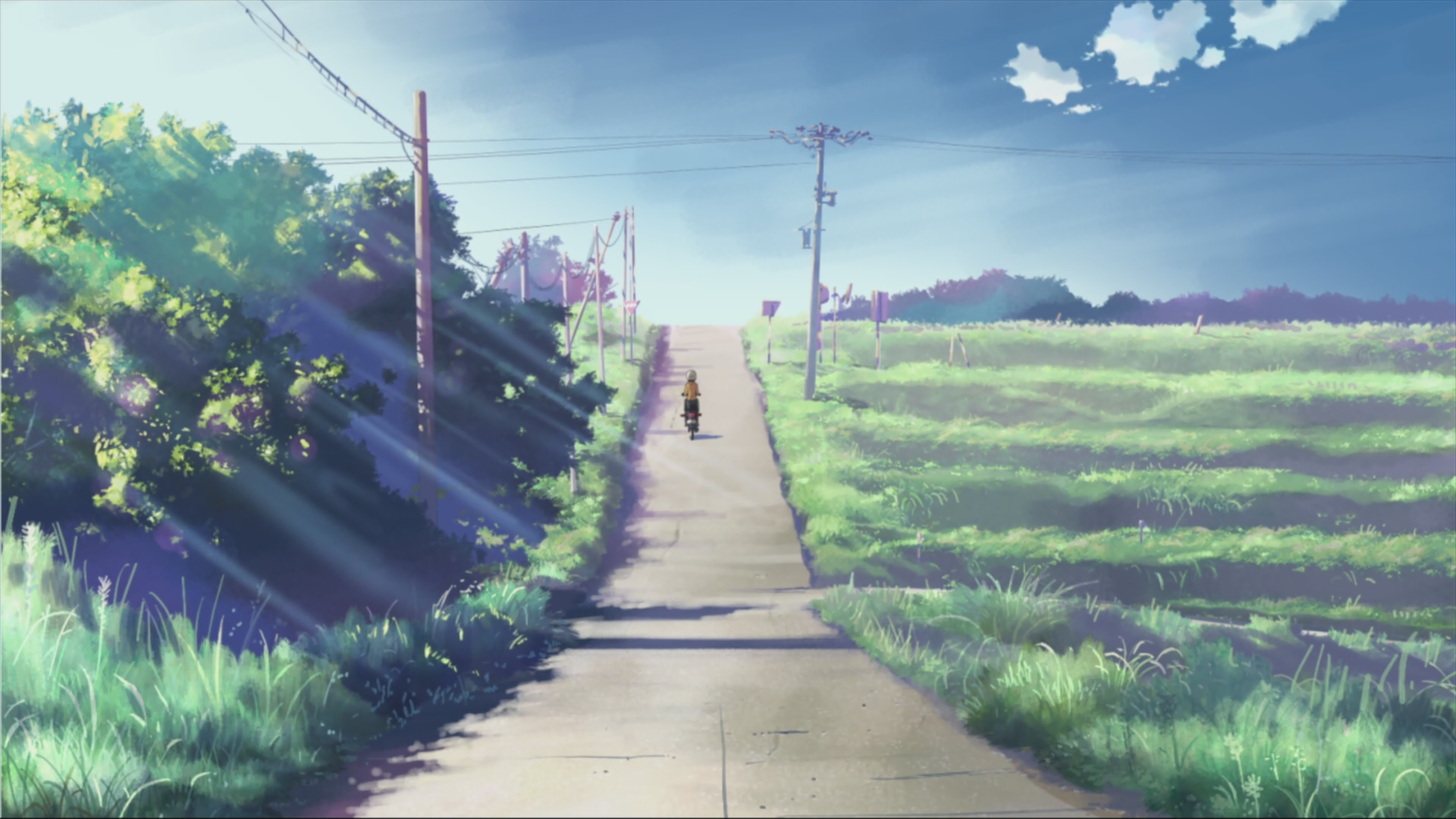 Makoto Shinkai Scenic 5 Centimeters Per Second Artwork