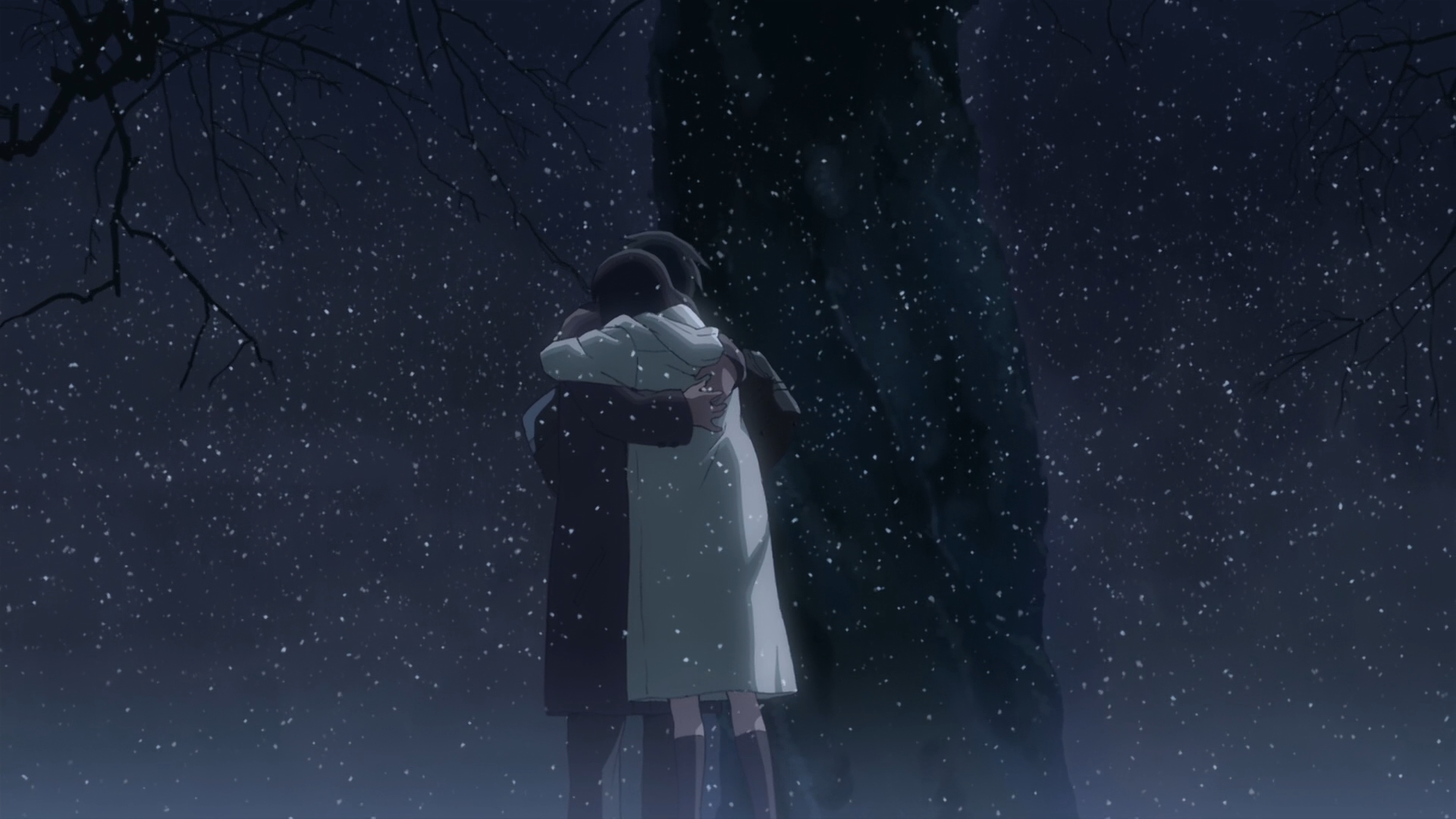 Makoto Shinkai Embrace 5 Centimeters Per Second Hugging Free