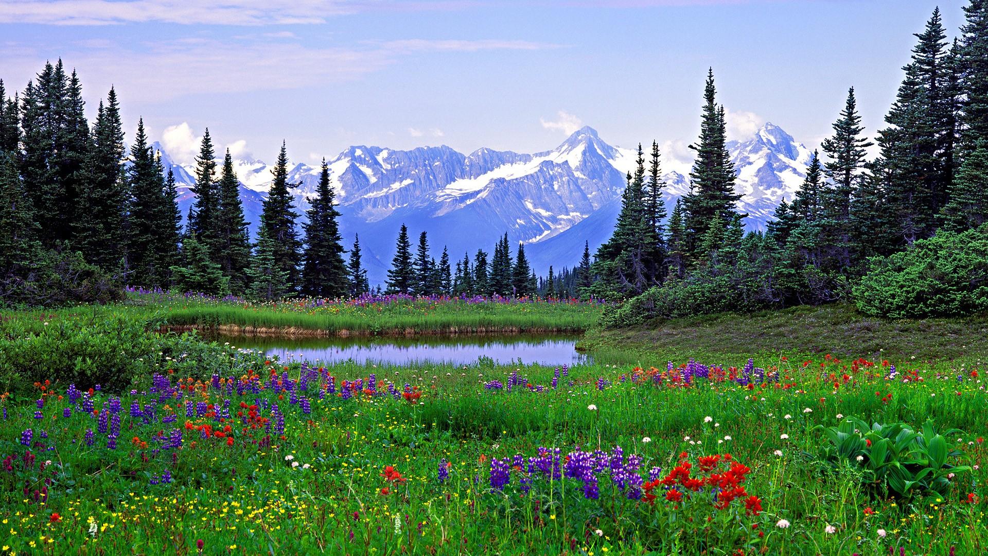 Mountains Rocks Colorado British Columbia Alps