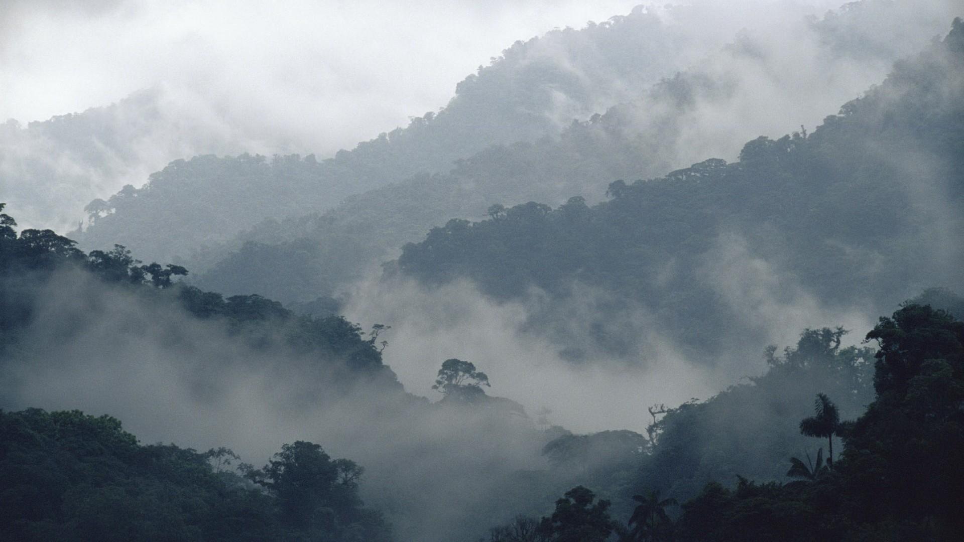 Fantastic Wallpaper Mountain Fog - ff3e1eb8fa110ae7386723e2f36c0ddb3adef2a1  Snapshot_42754.jpg