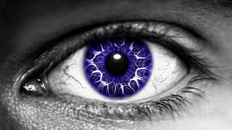 eyes, purple, selective coloring - desktop wallpaper