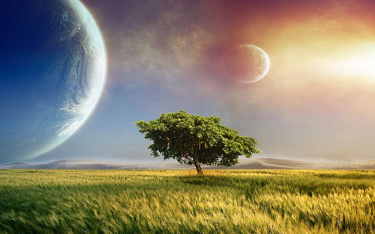 nature, outer space, trees, planets, grass, science fiction - desktop wallpaper
