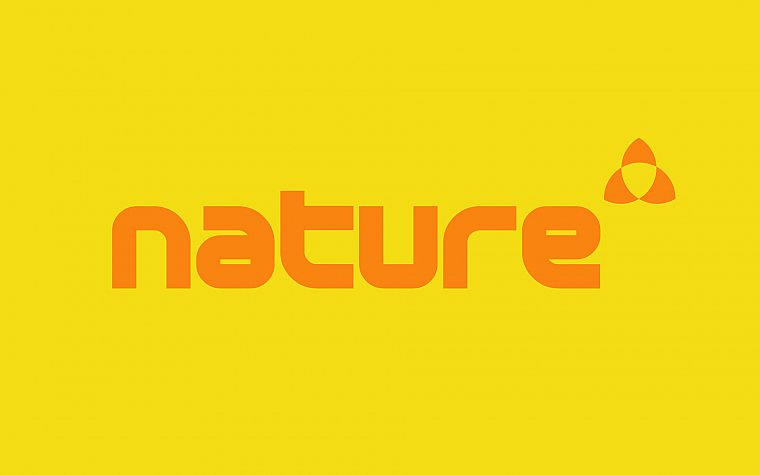 nature, yellow, typography, Wipeout - desktop wallpaper