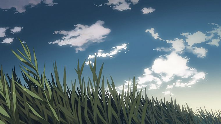 grass, animated, Makoto Shinkai, 5 Centimeters Per Second, drawn, skyscapes - desktop wallpaper