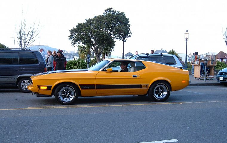 muscle cars, Ford Mustang Mach 1 - desktop wallpaper